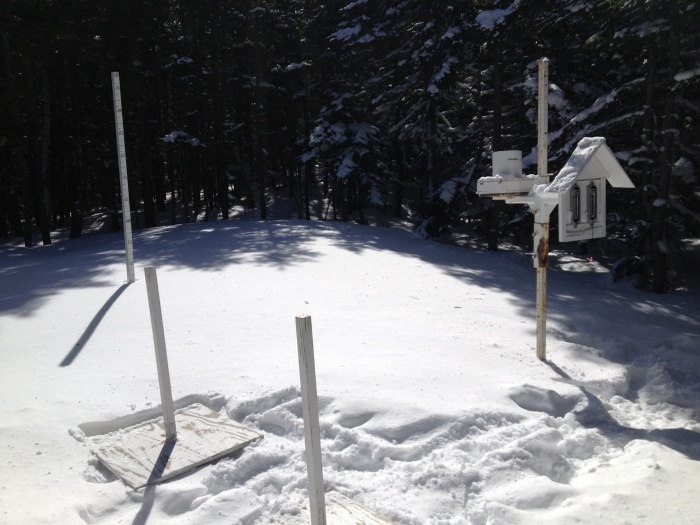 143 cms of snow at the stake...