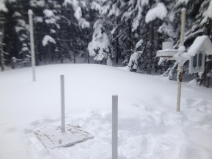 Checking out the snow study plot below Hermit Lake