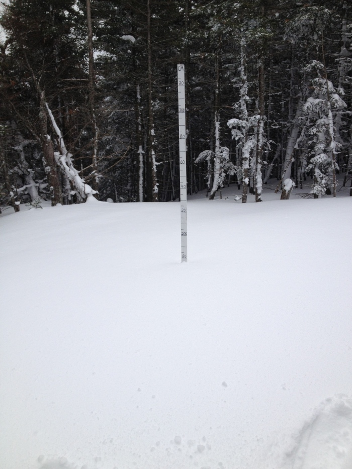 174cms of snow at the Hermit Lake snow stake