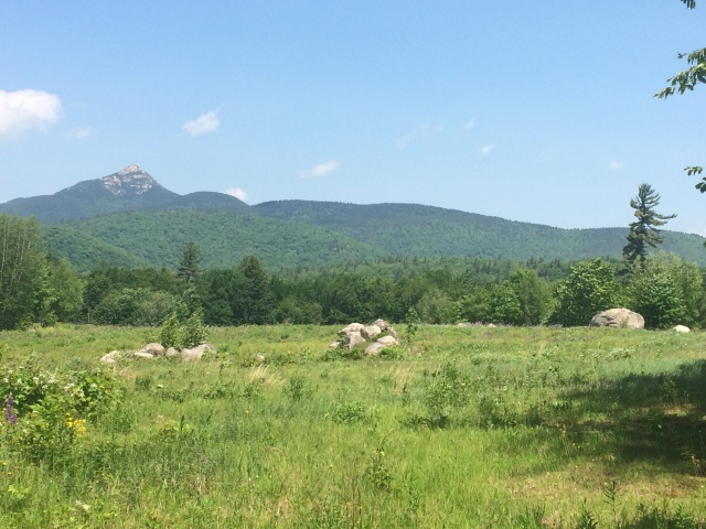 Mount Chocorua, 3,950 feet
