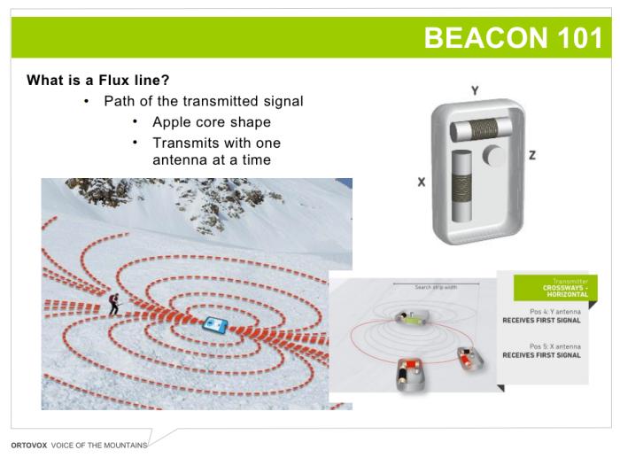 Ortovox Transceiver Beacon Review